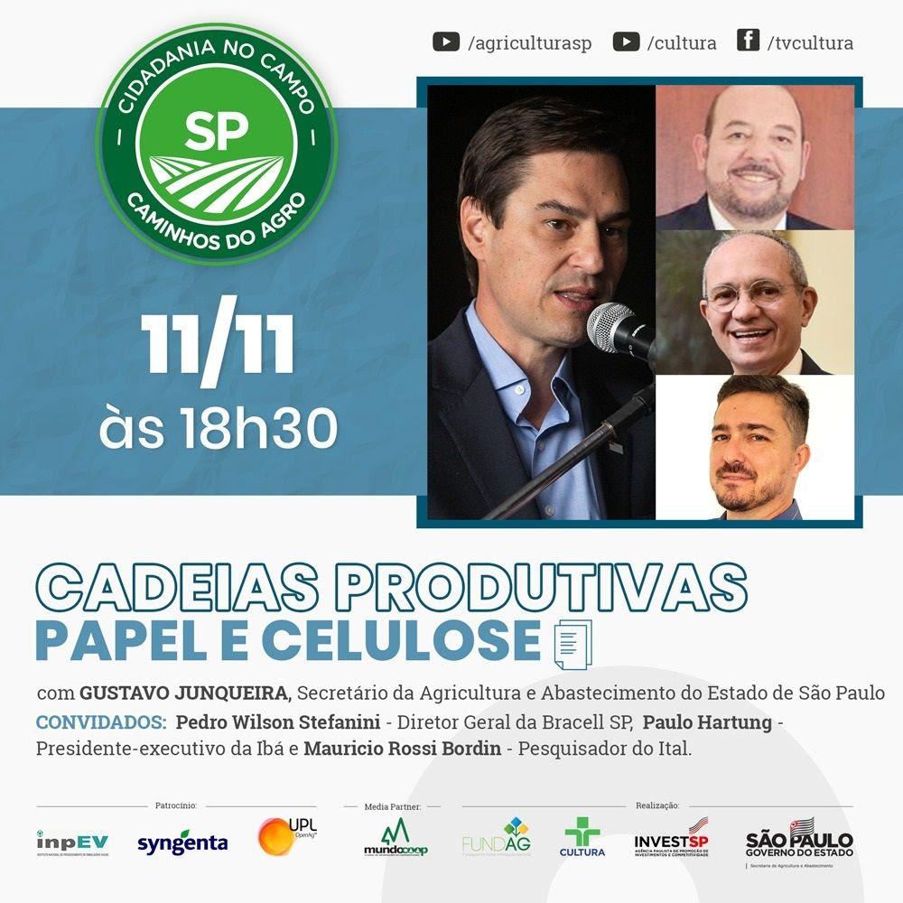 """Cadeia produtiva de papel e celulose é tema da live desta 4ª (11/11) do """"Caminhos do Agro SP"""""""