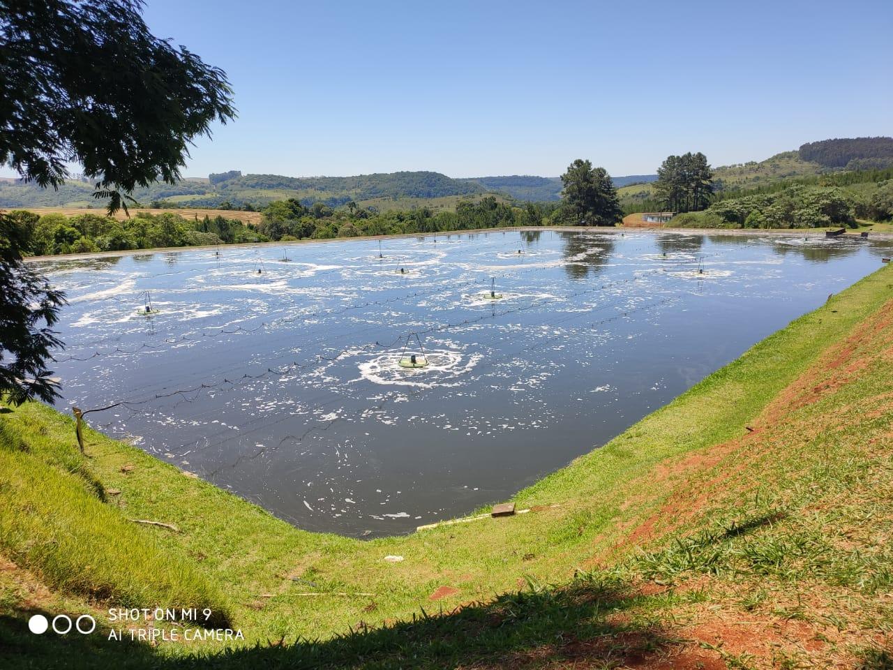 Planta da Ibema em Embu das Artes reduz consumo de água em 25% e embala um futuro sustentável