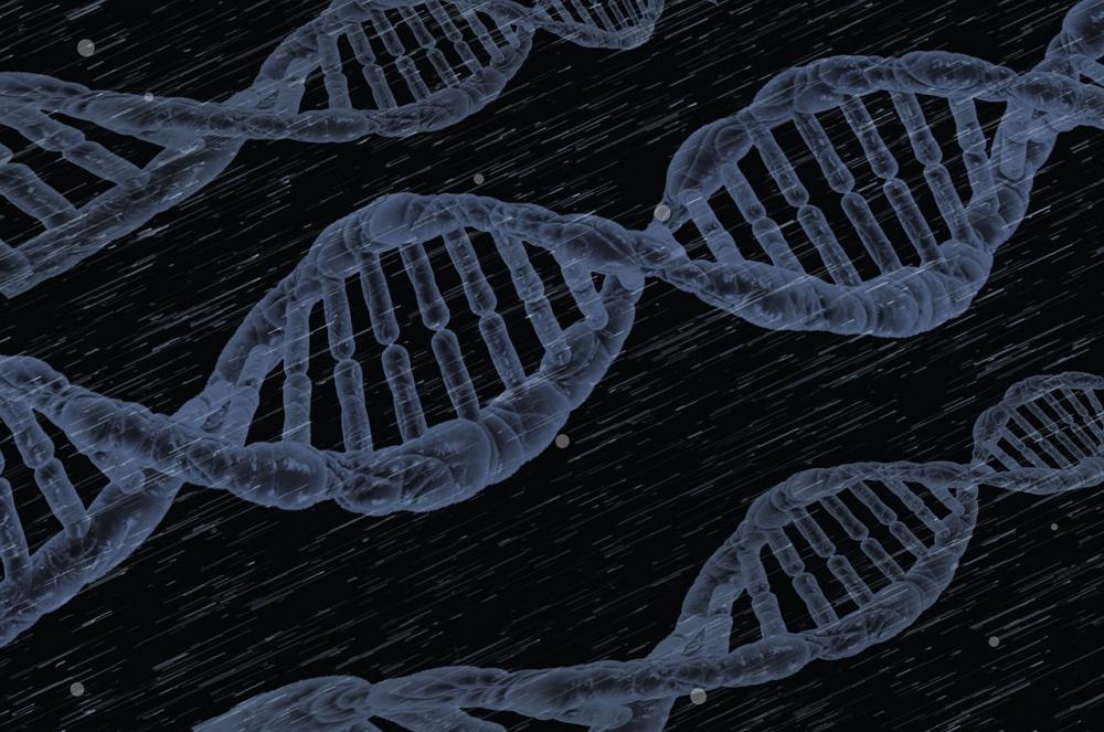 Plataforma on-line reúne genes de referência para pesquisa biomolecular