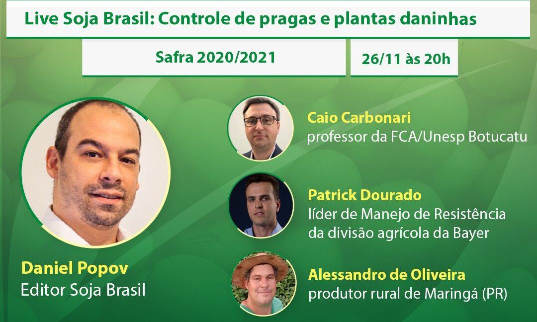 Nesta quinta: debate sobre controle de pragas e plantas daninhas na soja