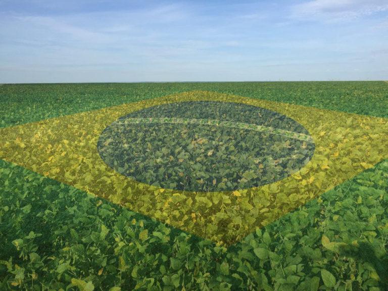 Índice de Confiança do Agronegócio é o maior da história, dizem entidades