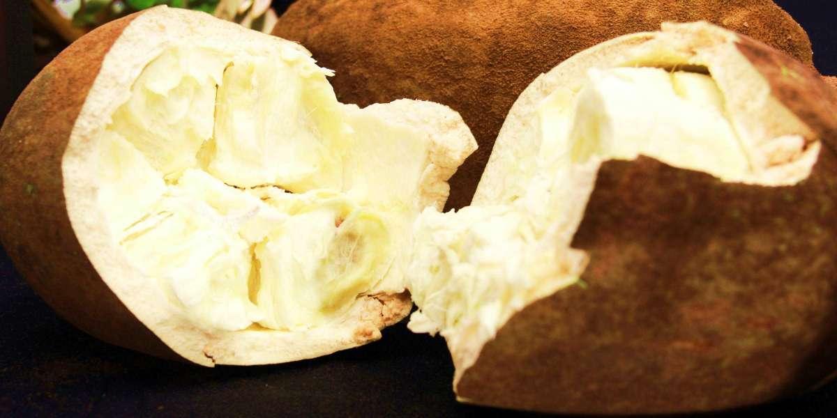 Benefícios da manteiga de cupuaçu