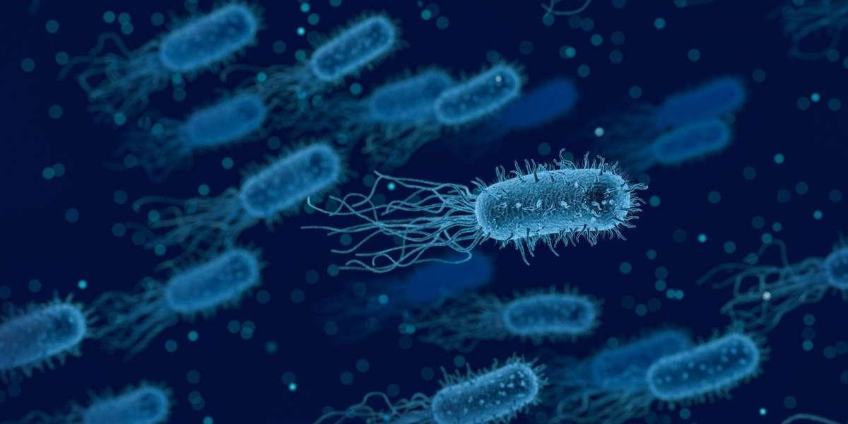 A importância de cosméticos que respeitem o microbioma da pele